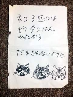 どんな猫たち?.jpg